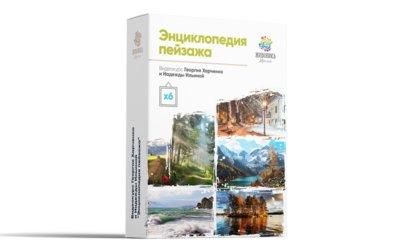 Видеокурс «Энциклопедия пейзажа», масло